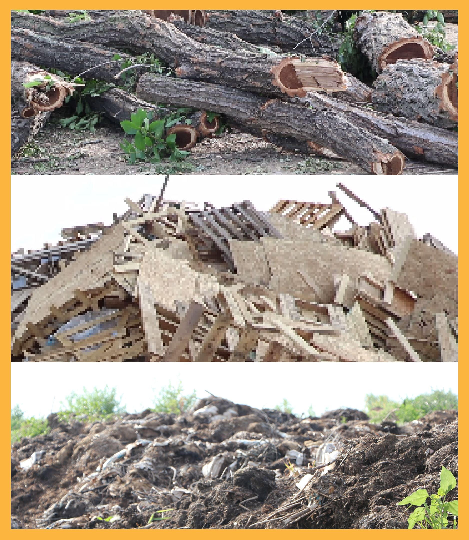 Photo of tree branches, lumber, and compost