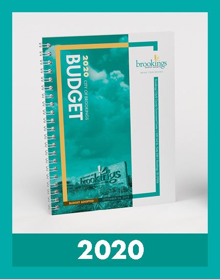 2020 Budget Book Cover Opens in new window