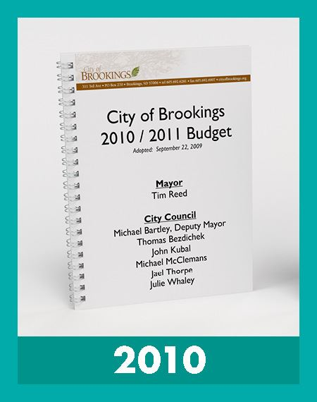 Photo of 2010 Budget Book Opens in new window