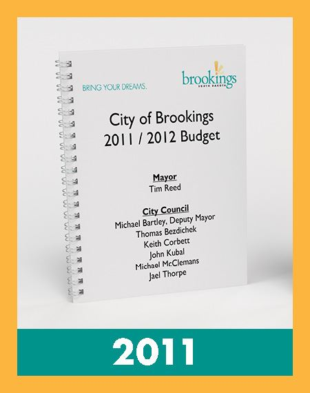 Photo of 2011 Budget Book Opens in new window