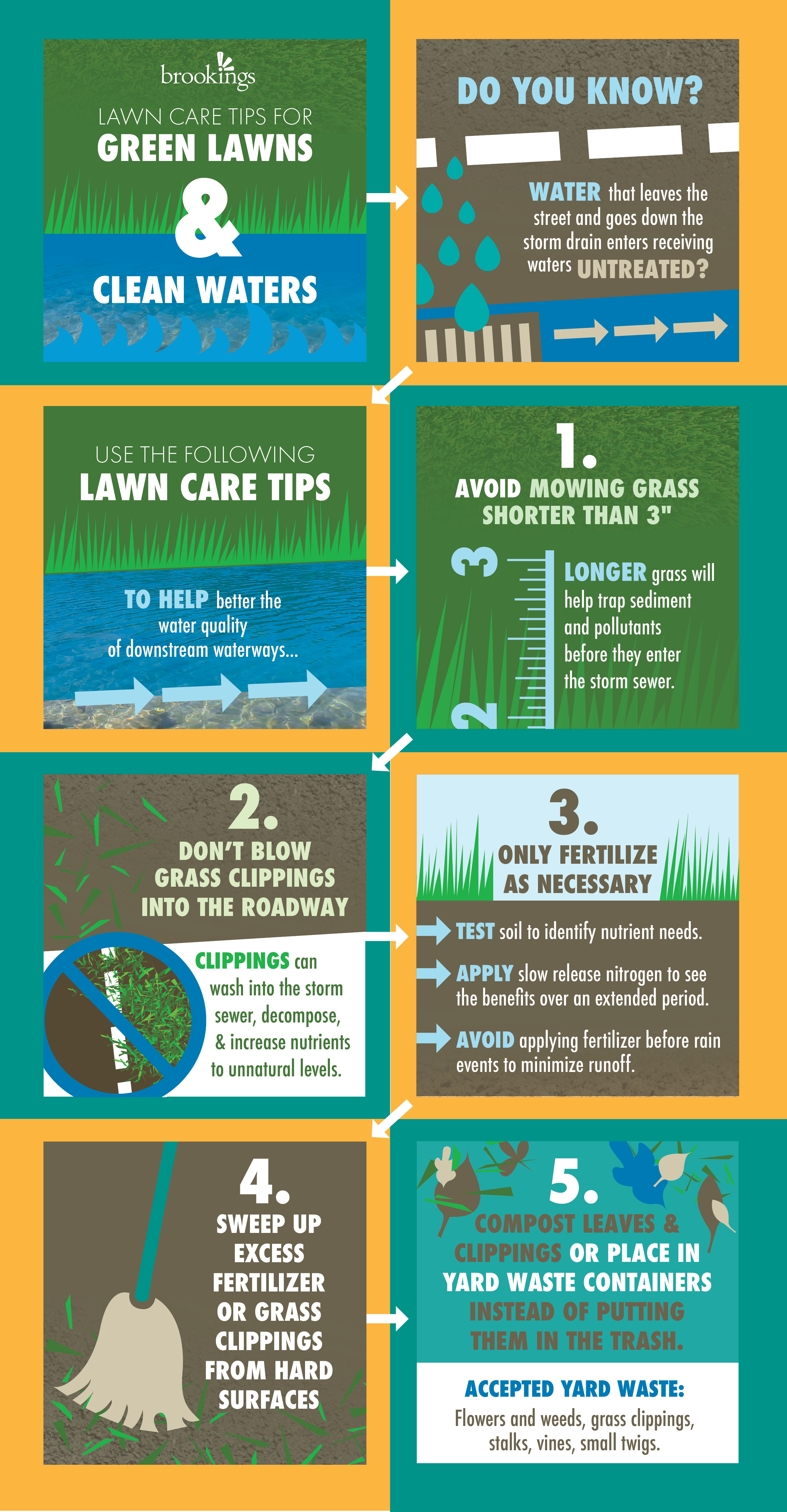Green Lawns and Clean Waters Infographic.jpg